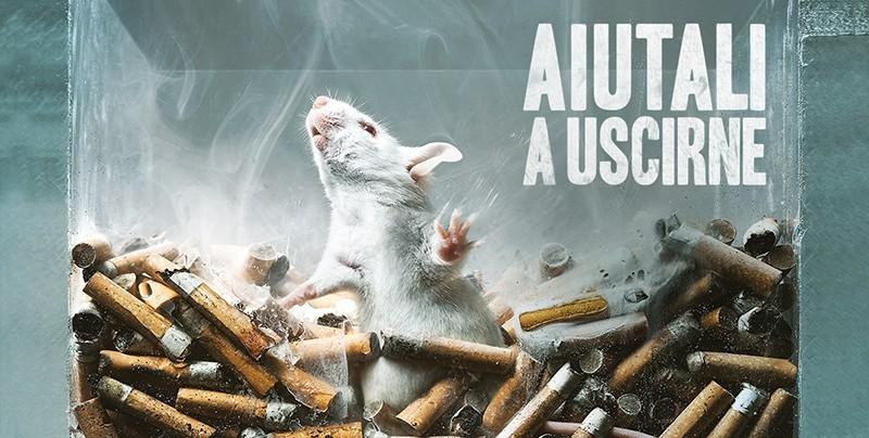 No a test animali per sostanze abuso: domani consegna firme al Ministero