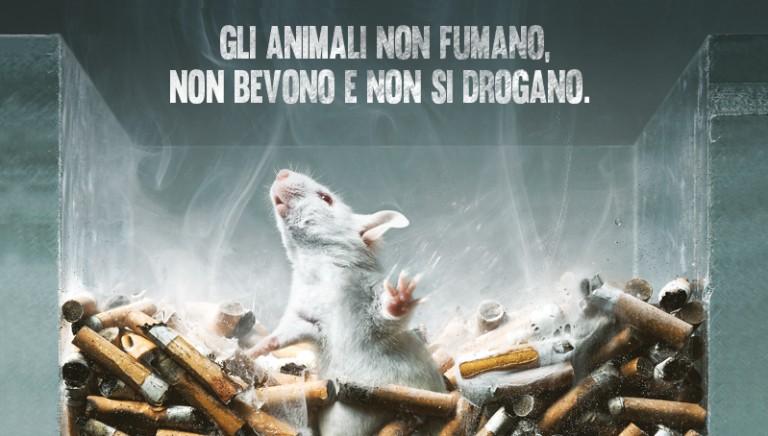 Prorogati di 3 anni i test sugli animali per fumo, alcol e droghe.
