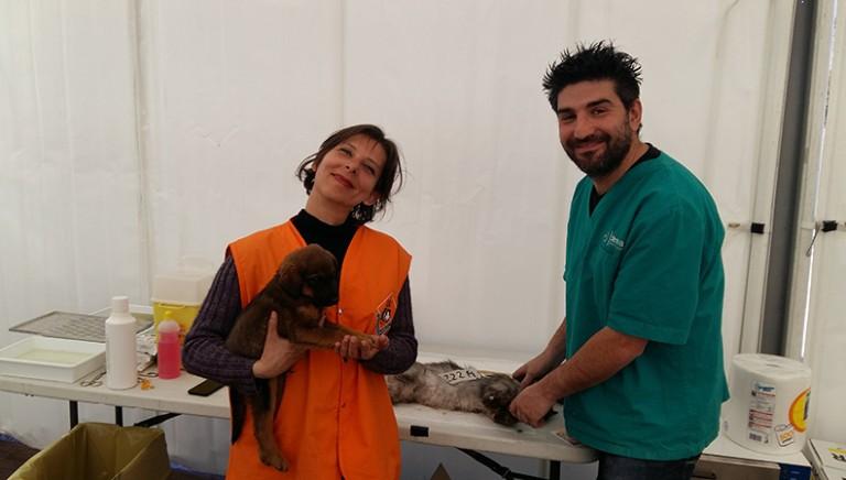 Completato il 2° campo di aiuto agli animali del terremoto