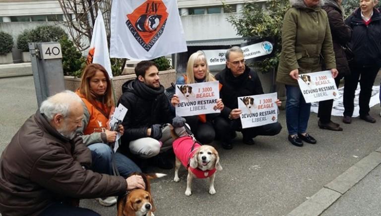 Green Hill bis: Procura chiede 2 anni reclusione per veterinari ASL imputati