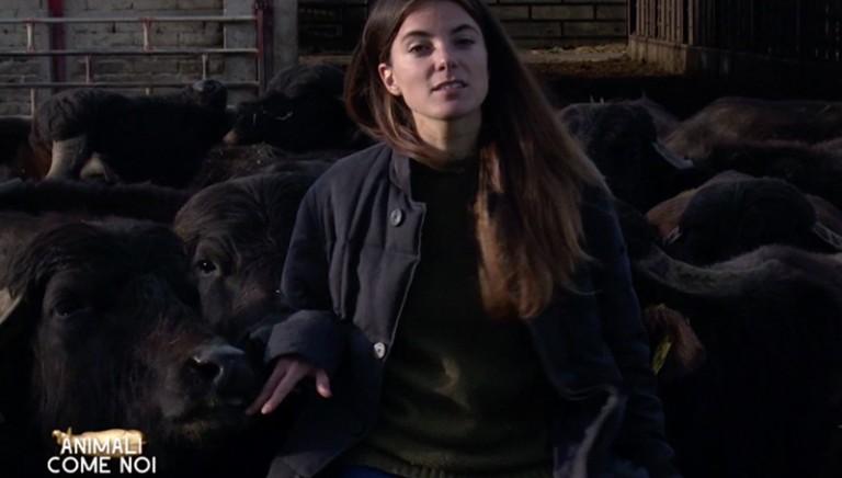 #40ANNILAV, due domande a...Giulia Innocenzi