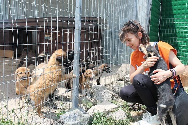 Ilaria Innocenti, responsabile LAV area Animali Familiari durante la visita a un canile in Kosovo