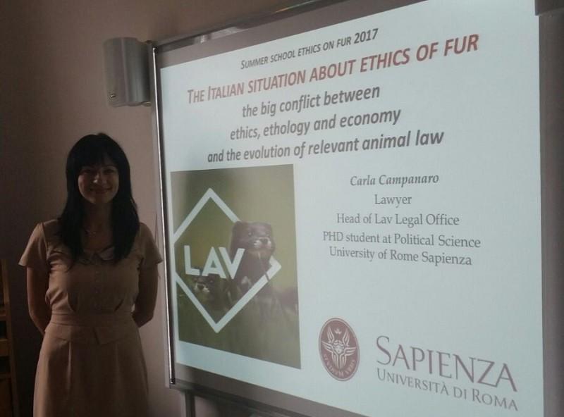 L'avvocato Carla Campanaro, Responsabile ufficio legale LAV