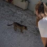 Federica Faiella, responsabile Adozioni LAV, con la mascotte felina del canile