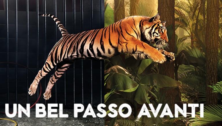 Circhi: passo indietro del Ministro Dario Franceschini su stop uso animali