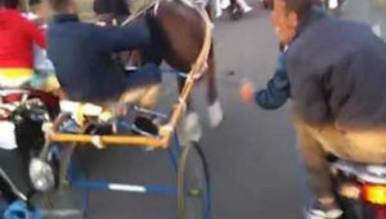 Messina: corse clandestine di cavalli.9 arresti per associazione a delinquere