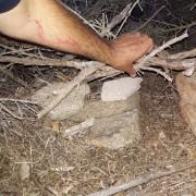 Una trappola per conigli all'Isola del Giglio (C) LAV