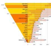 Impatto degli alimenti in termini di emissioni g CO2 (Fonte: Barilla Center for Food & Nutrition 2015)