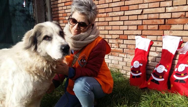 Befana e volontari LAV in aiuto degli animali terremotati del Centro Italia