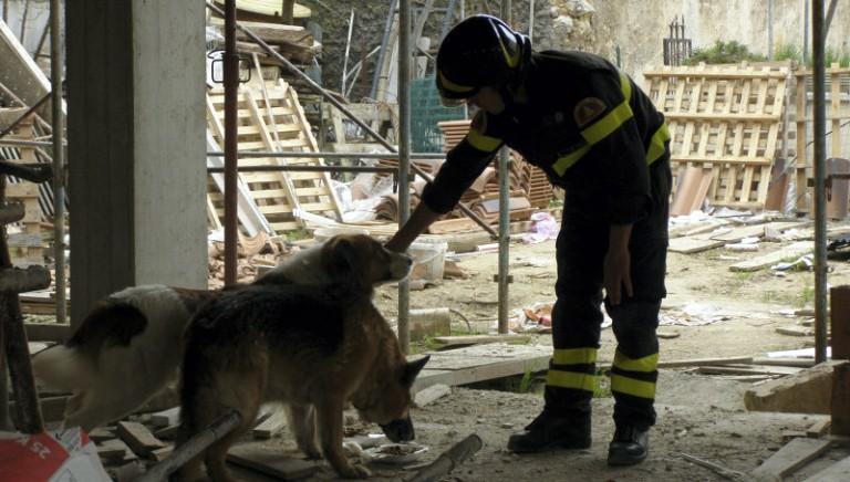 Piano Vesuvio, Associazioni a Regione Campania: no eutanasia animali familiari in zona rossa