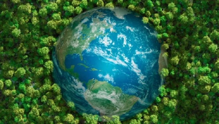"""Anche gli animali nell'appello """"Laudato sii"""" per il clima, la Terra e la giustizia sociale"""