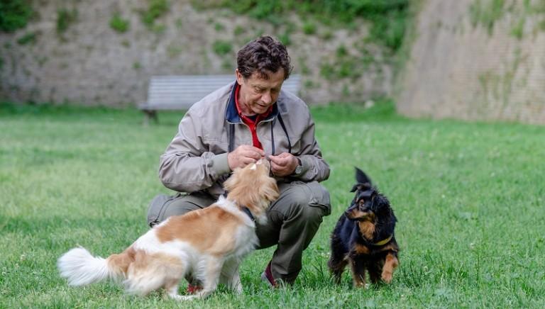 Fratelli a quattro zampe: a tu per tu con l'attore Massimo Wertmuller