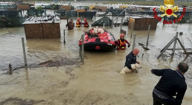 Maltempo e animali, necessari Piani di emergenza per intervenire in caso di calamità naturali