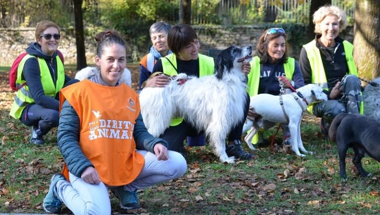 #UNAVECCHIAMICIZIA: nuova vita per i cani del Rifugio APACA di Belluno