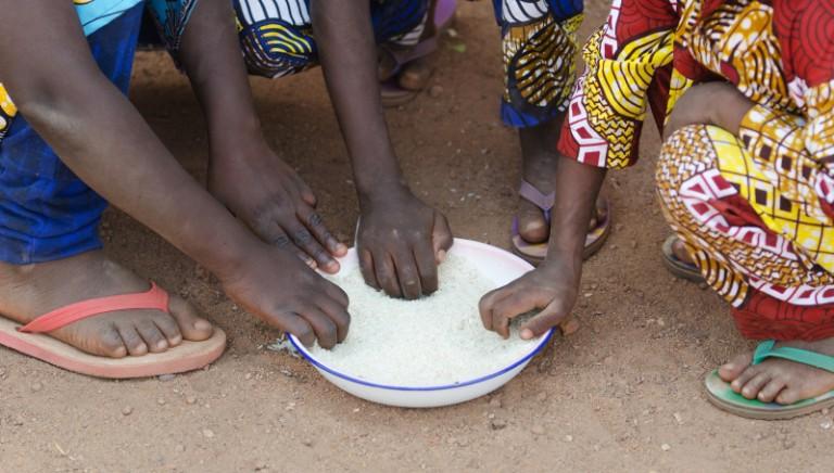 Alimentazione, giornata mondiale FAO: obbiettivo #famezero? Possibile solo con scelta vegan
