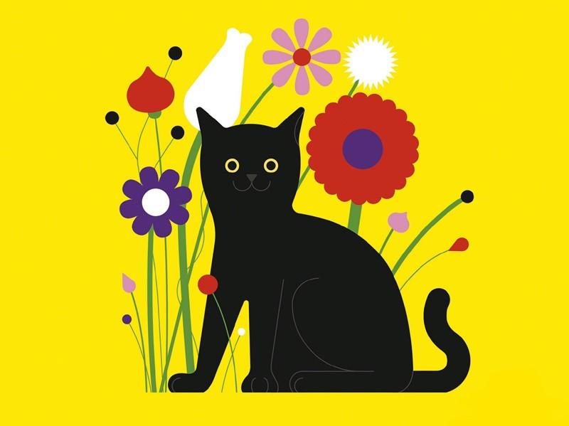 Storia di Milo, il gatto che non sapeva saltare. Una favola d'integrazione, sulla disabilità e il diverso