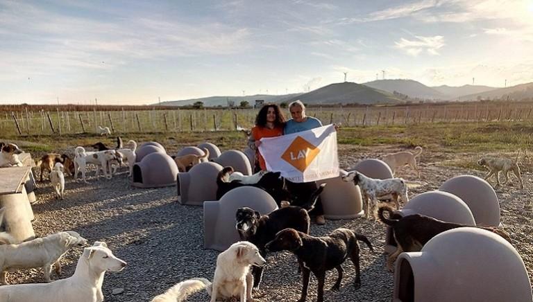 Maltempo: da LAV 20 cucce e 1500kg di cibo al Rifugio Argo di Cirò Marina (KR)