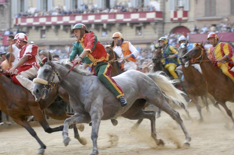 Siena, a processo tre fantini e un veterinario: tra le ipotesi di reato il maltrattamento di cavalli