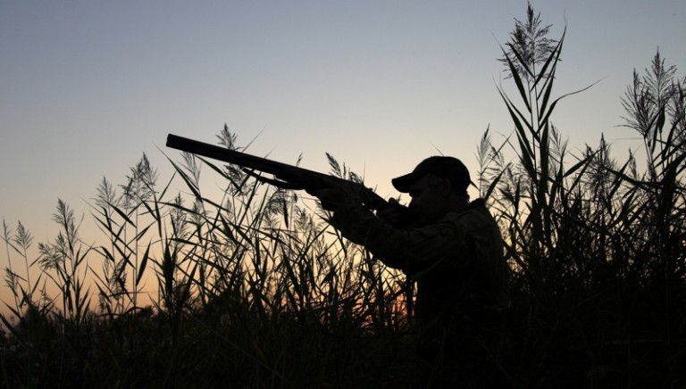 Calendario venatorio Toscana, Consiglio di Stato accoglie ricorso Associazioni: ridurre periodi di caccia