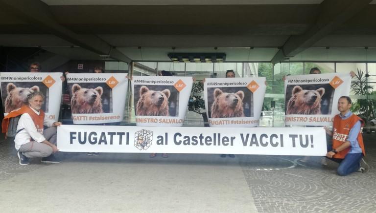 M49: siamo a Trento per opporci alla sua cattura!