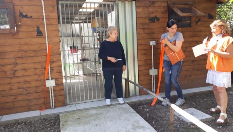 """Modena, inaugurato un nuovo """"gattile"""" grazie al lascito di un donatore"""