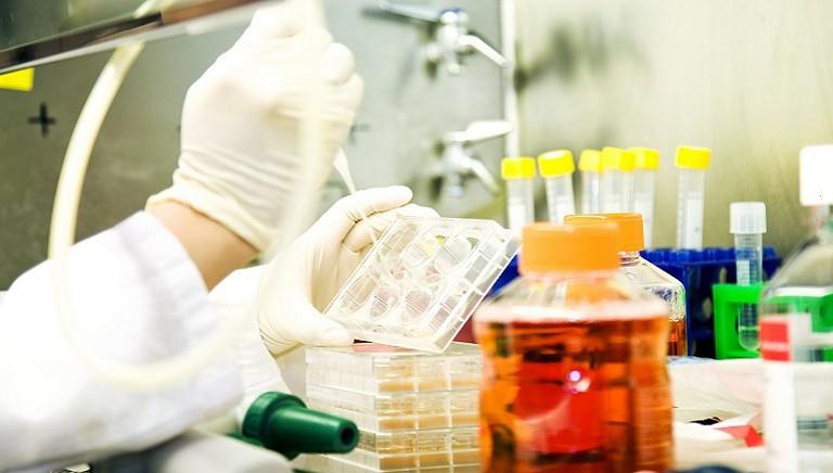 Metodi alternativi alla sperimentazione animale: LAV al convegno del Ministero