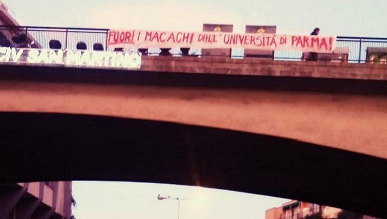 #CIVEDIAMOLIBERI: la mobilitazione per i macachi continua in tante città