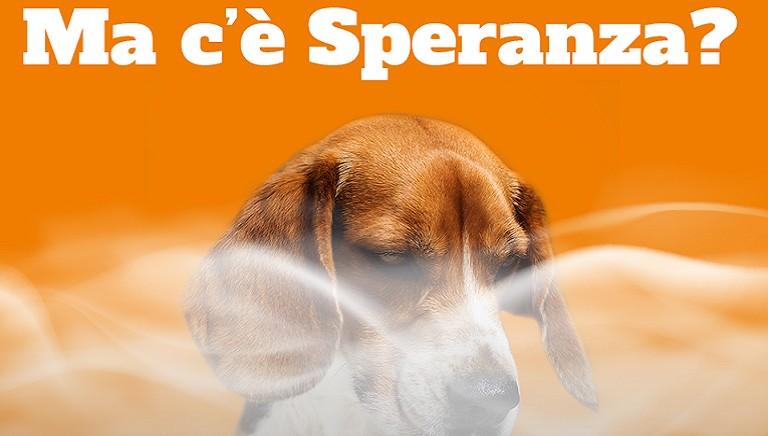 """""""Milleproroghe"""" e test animali sostanze d'abuso: appello a Ministro Speranza"""