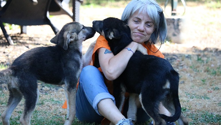 Buone notizie: approvato aumento delle spese veterinarie detraibili