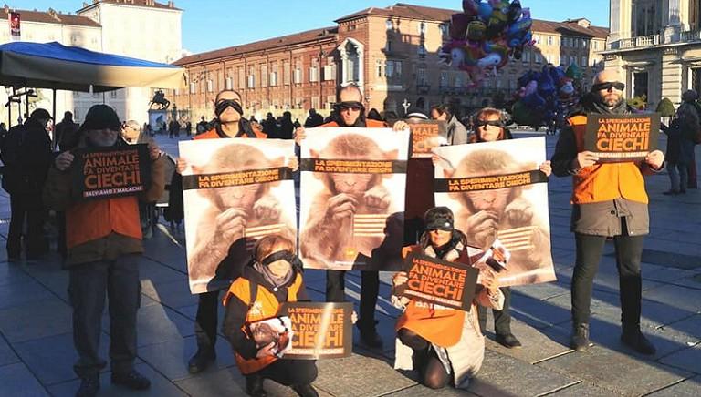 #CIVEDIAMOLIBERI: flashmob a Torino per salvare i macachi dagli esperimenti