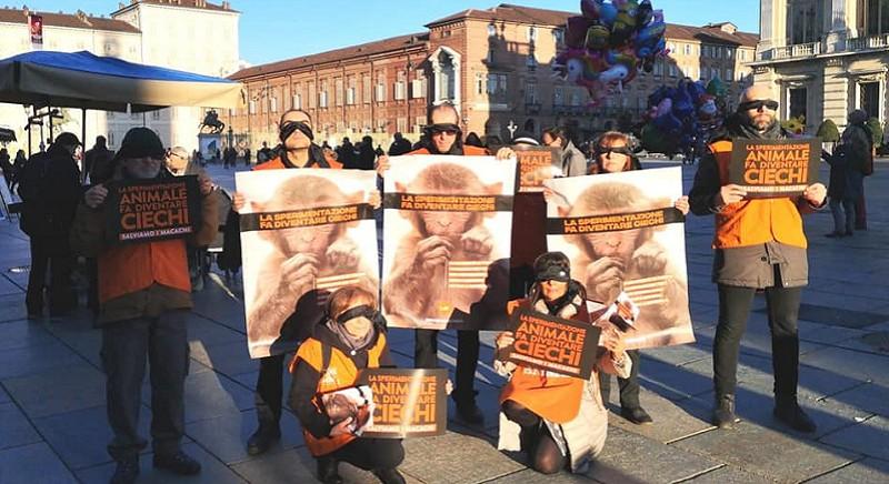 Il Flashmob LAV Torino a Piazza Castello