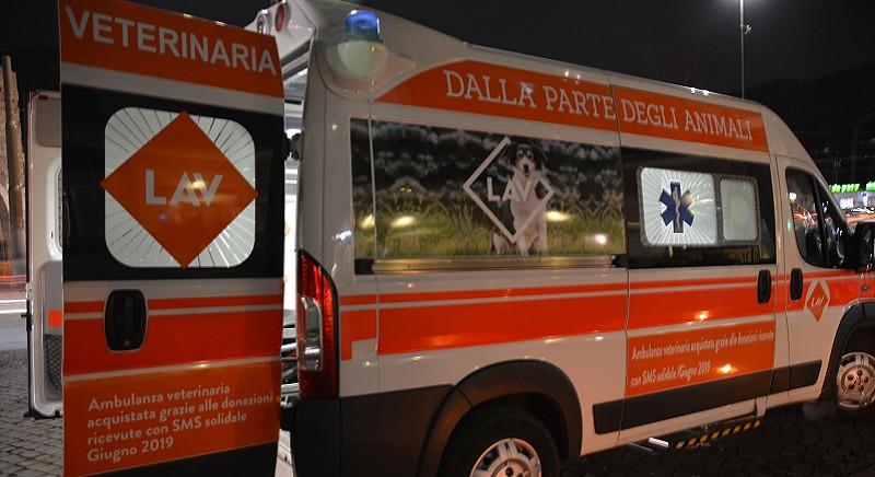 L'ambulanza veterinaria LAV