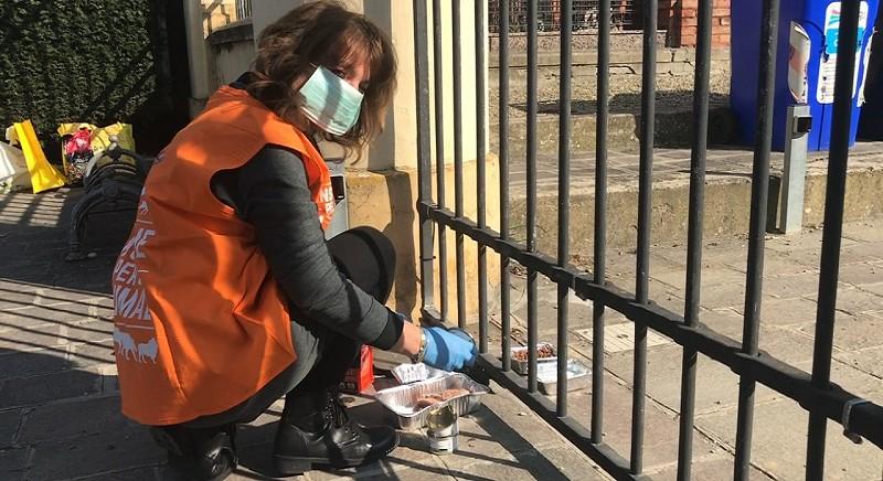 Annalisa, LAV Modena, accudisce i gatti di una colonia felina