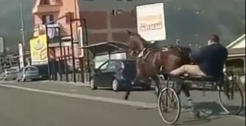 Corsa clandestina di cavalli a Sora (Frosinone)