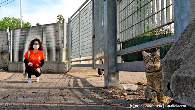 Nuovo DPCM, al via la fase 2: accudire gli animali resta diritto-dovere
