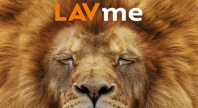 Dona il tuo 5XMille a LAV: con nessun costo salverai migliaia di animali!