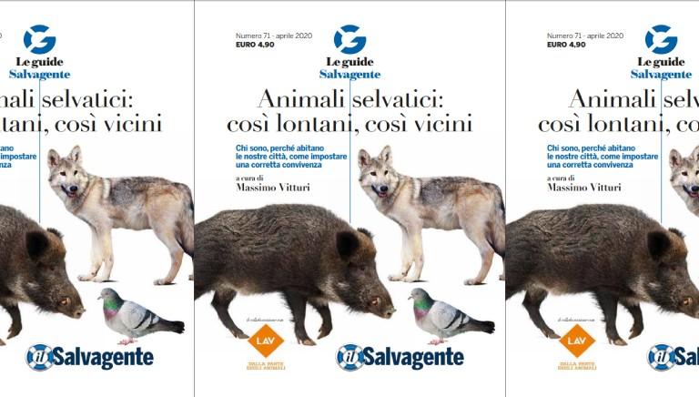 Animali selvatici: cosi' lontani, cosi' vicini: Guida Salvagente-LAV