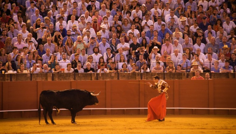 Our investigation on Corrida reveals: cruelty and public health hazard financed by CAP!