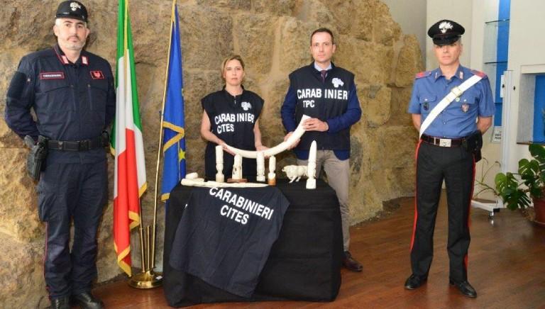Rinnovato Protocollo LAV-Carabinieri, per contrastare reati contro gli animali