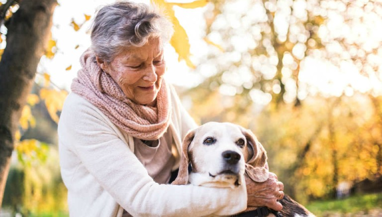 Marche approvano misure di sostegno per chi ha cani/gatti o li adotta!