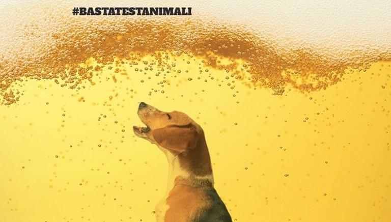 Vittoria: la birra Asahi non testera' piu' sugli animali! #BASTATESTANIMALI