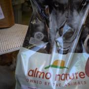 Blanca, uno dei cani aiutati a Viterbo