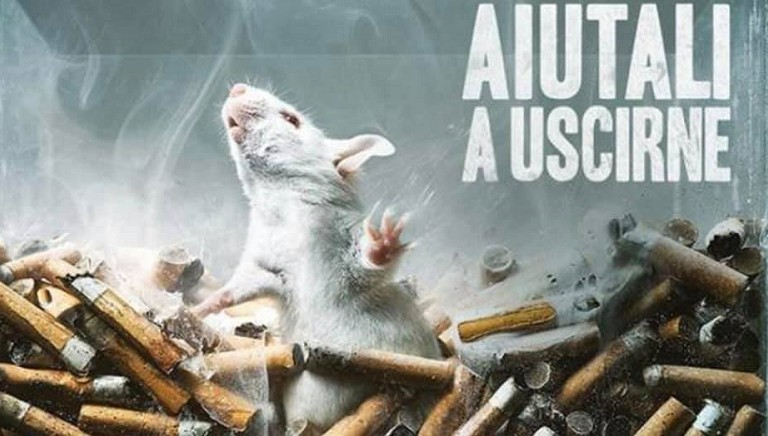 Test animali per alcol e droghe, respinto tentativo di proroga Sen. Cattaneo!