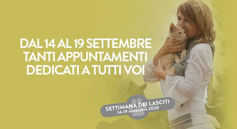 Testamento e animali: 14/19 settembre, eventi gratuiti LAV e Notariato