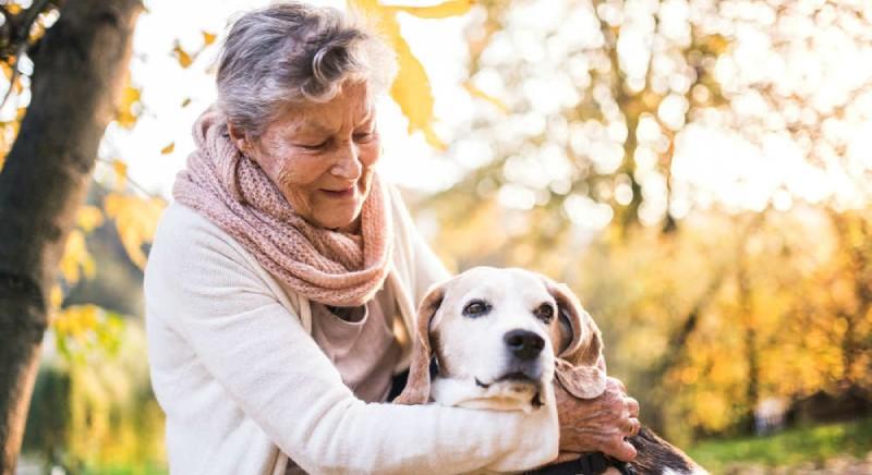 Assemblea Legislativa Emilia Romagna: si a incentivi per chi adotta cane o gatto