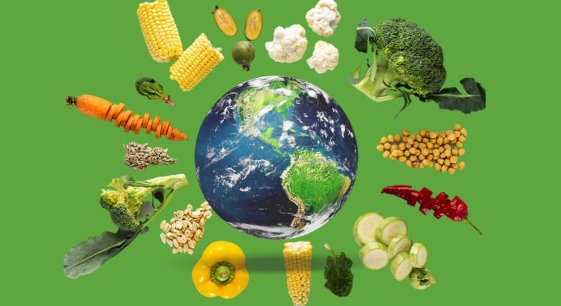 Giornata dell'Alimentazione: appello a Parlamento UE. #NONCOMEPRIMA