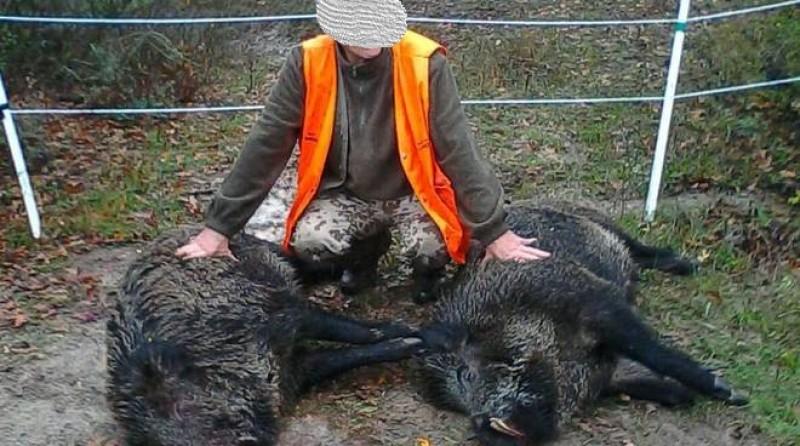 Interrogazione su caccia al cinghiale 'no limits' in violazione del DPCM
