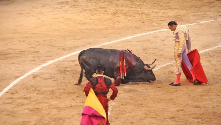 La Corrida non entrera' a far parte dei patrimoni riconosciuti da Unesco