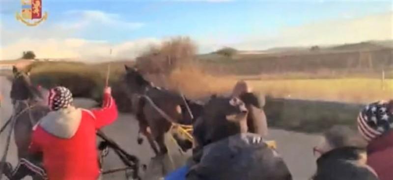 La lotta infinita alle corse clandestine di cavalli