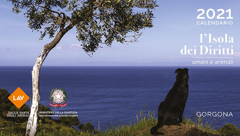 Calendario LAV 2021: Gorgona, isola dei diritti umani e animali. Sfoglialo!